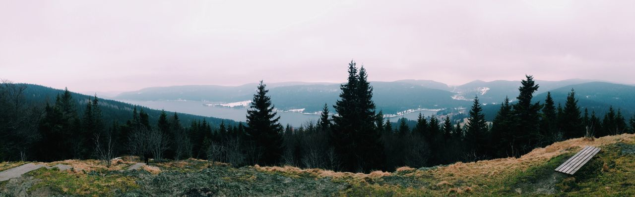 EyeEm Selects EyeEm Selects Mountain Nature Tranquility Beauty In Nature Mountain Range Tranquil Scene Scenics Tree No People Landscape Snow Cold Temperature Outdoors Sky Growth Day Winter Wilderness Area Blackforest