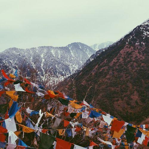 Hiking in the Himalayas.| Himalayas Dharamshala Traveling Vscocam |