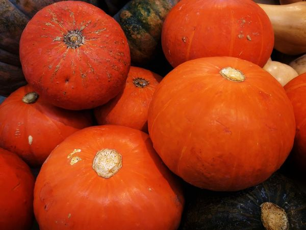Gourds Healthy Eating Orange Color Fruit Food No People Vegetable Close-up Red Day Indoors  Agriculture Pumpkin Freshness