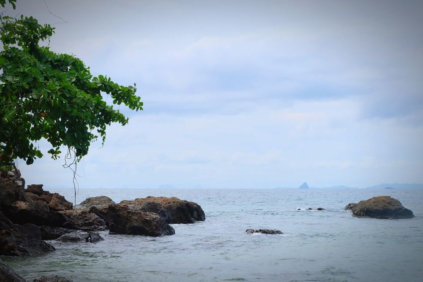 Sea Water Sky Sea Beauty In Nature Rock Tree Scenics - Nature Plant Cloud - Sky Rock - Object Nature Land Solid Tranquility Tranquil Scene Horizon Over Water Day Beach No People Outdoors