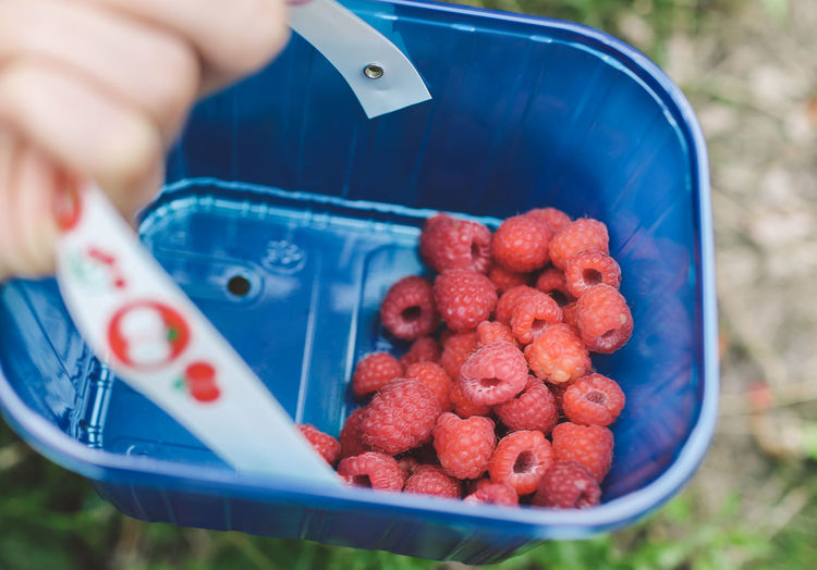 Cropped Hand Holding Raspberries In Basket
