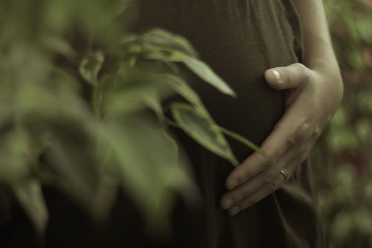 Midsection of pregnant woman touching her belly while standing by plants