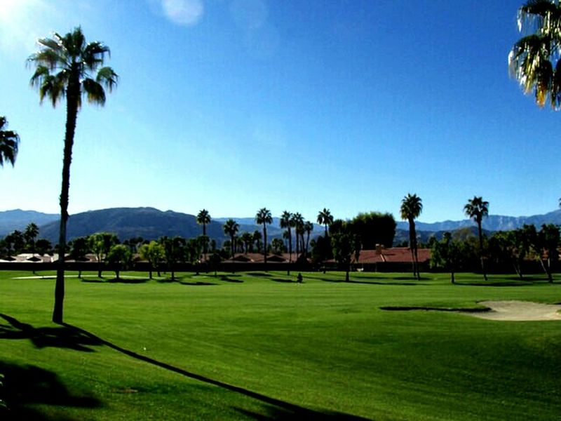 Palm Trees Beautiful Golf Course Golfcourse Golfing Fun Nature_collectionGolf In Paradise Fairway