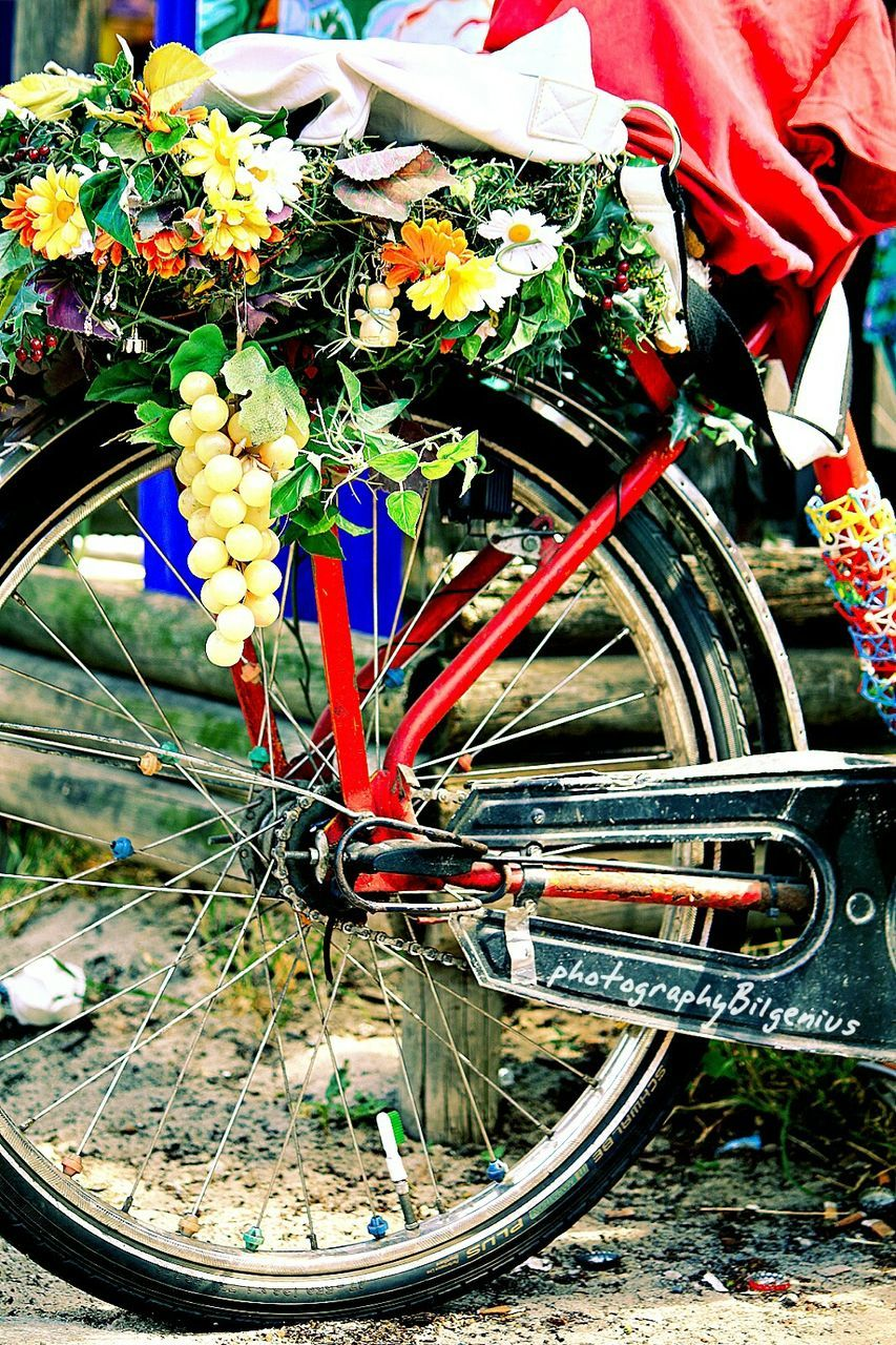 land vehicle, transportation, mode of transportation, bicycle, day, no people, multi colored, flower, close-up, flowering plant, wheel, nature, outdoors, plant, large group of objects, spoke, abundance, high angle view, still life, stationary, bouquet