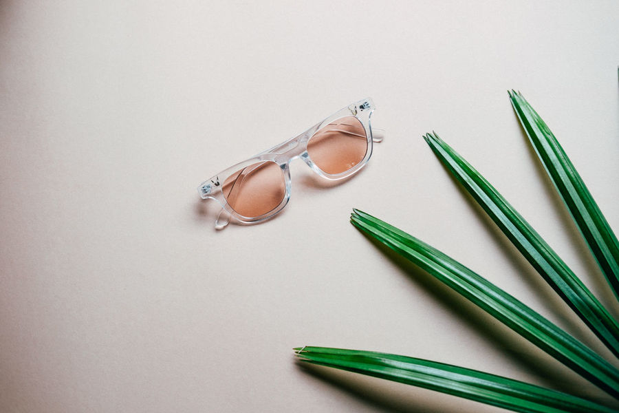 Flat lay of minimal workspace desk eyeglasses with plant, copy space Close-up Flat Lay Glasses High Angle View Indoors  No People Plam Plant Spring Still Life Studio Shot White Background