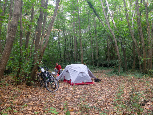 Bike Adventure Adult Adventure Bicycle Bike Packing Bike Touring Camping Day Forest Full Length Nature One Man Only One Person Outdoors People Tree Velodyssee WoodLand