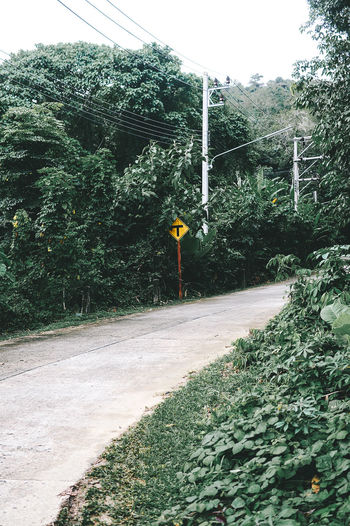Phuket Thailand Coconut Island Day Green Color Growth Nature No People Outdoors Plant Road Road Sign Signal Sky The Way Forward Transportation Tree