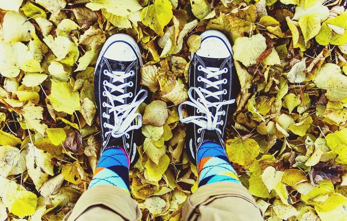 Happysocks Checkeredsocks Happy Socks Chucktaylor Allstars AllStarshoes Autumn Colors Colourfulsocks
