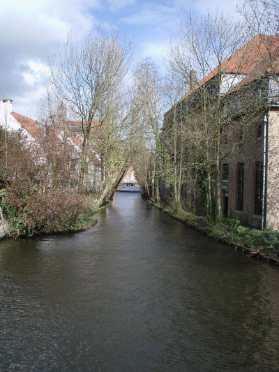 Belgium Blue Sky Branches Bruges Brugge Canal Clouds And Sky Europe Landscape Nature Outdoors Peaceful Serene Sky Travel Tree Tree Trees Water