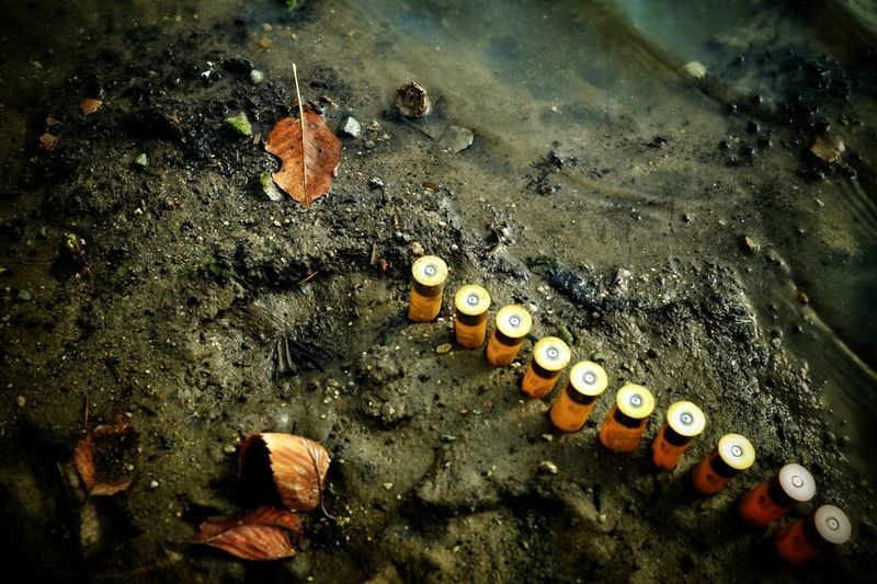 High Angle View of Shotgun Shells At Beach