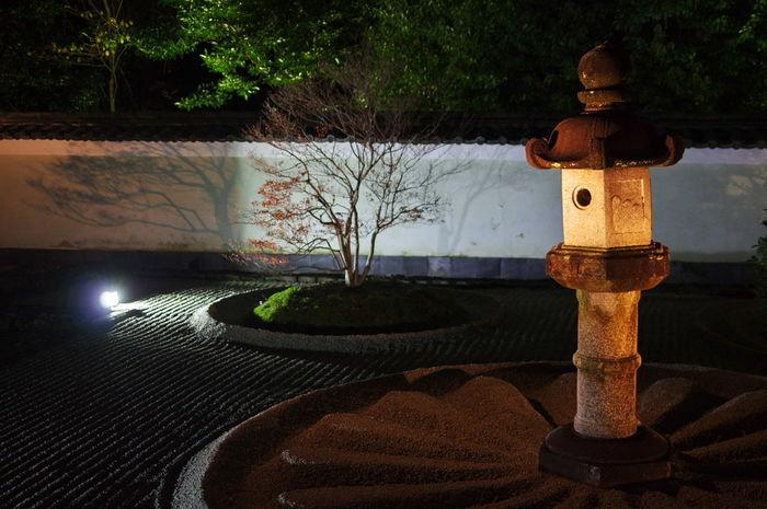 そうだ京都、行こう。 雲龍院 紅葉 紅葉🍁 Autumn Leaves Autumn🍁🍁🍁 Outdoors