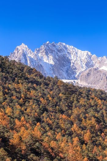 Yunnan ,China China Mountain Scenics Mountain Range Nature Beauty In Nature Snow Tranquility Blue Sky No People Landscape Outdoors Tree Winter Clear Sky Tranquil Scene Snowcapped Mountain Cold Temperature Day