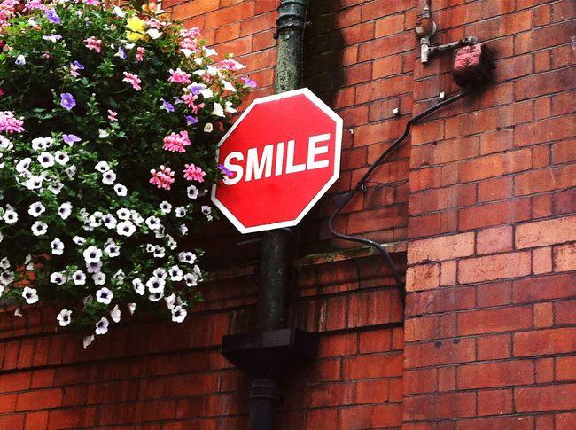 Smile Smile ✌ Smile :) Sign Signs Signstalkers SignSignEverywhereASign Signporn Fineart Fine Art Flowers Eye Em Eye Em! EyeEm EyeEm Gallery EyeEmBestPics Colours Colors Colorful First Eyeem Photo Spring Spring 2016 Best EyeEm Shot Streetart Wall EyeEmNewHere Be. Ready.