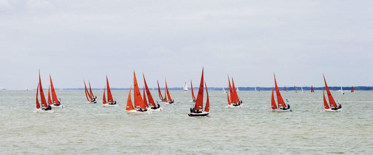 Red sails racing at cowes week