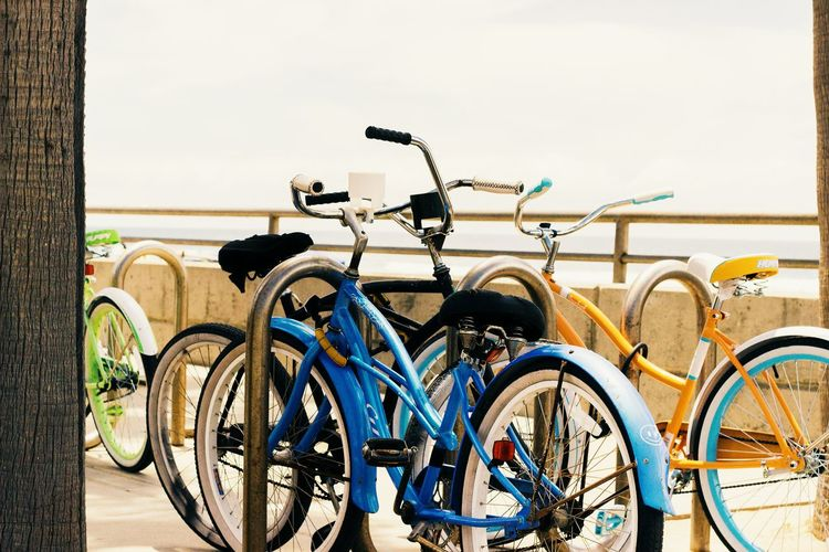 Bicycles parked on bicycle
