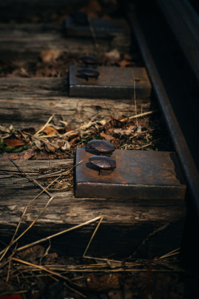 Abandoned Broken Canadian National Railway Close-up Damaged Day Deterioration Dirty Dry High Angle View I Love Trains Leaf Obsolete Old Railroad Railroad Spike Railroad Ties Railroad Track Run-down Rusty Selective Focus Showcase April This Week On Eyeem Wood Wood - Material