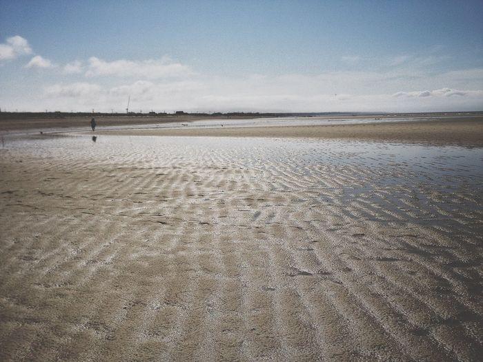 Scenic view of wet beach