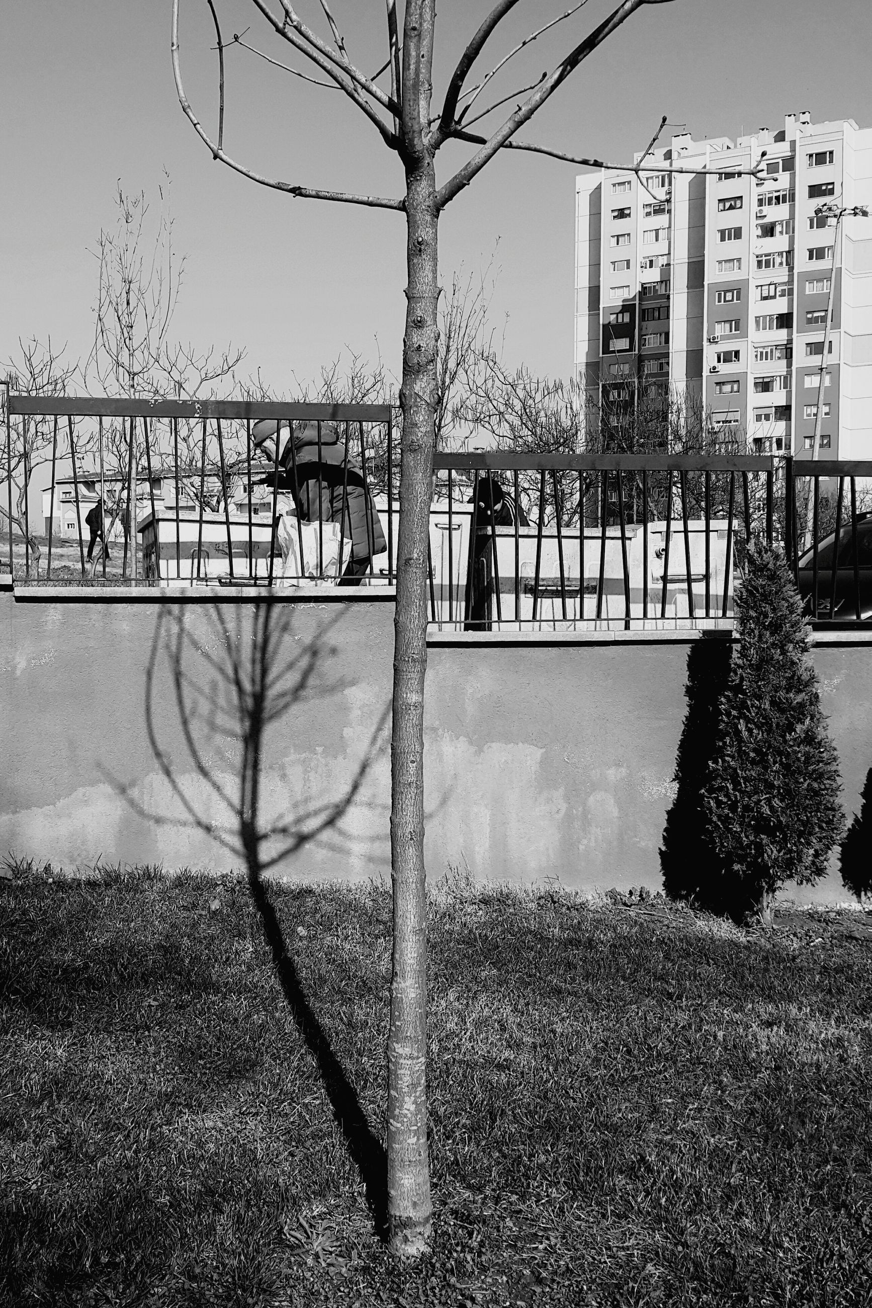 built structure, building exterior, architecture, tree, plant, nature, no people, day, sky, fence, outdoors, barrier, water, boundary, city, transportation, building, grass, bare tree