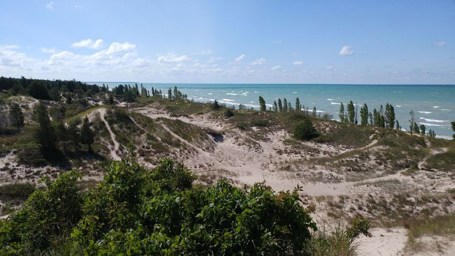 Beach Water Horizon Over Water Sand Sky Nature No People Day Outdoors Cloud - Sky Beauty In Nature Tranquility Landscape Travel Destinations Tree Vacations Dunes Waves Expanse Ontario, Canada Pinery Provincial Park