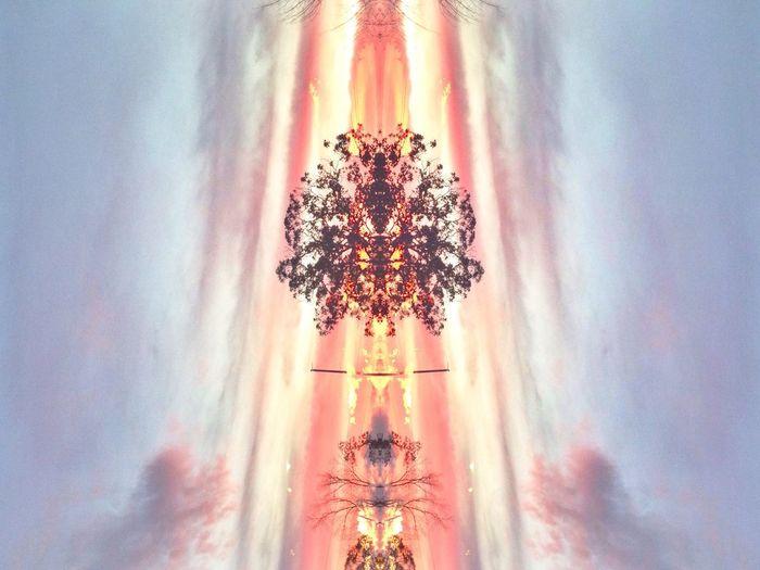 Tree Sky Afterlight Transformation