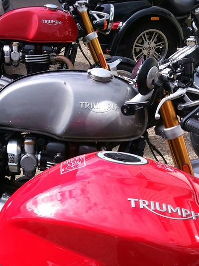 Motorcycles Triumph Today's Hot Look Hanging Out Taking Photos Best Of British Check This Out Enjoying Life Classy