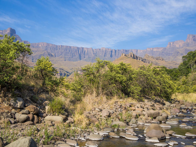 Drakensberg, South Africa Drakensburg Mountains, South Africa, Mountain Hiking Animal Themes Beauty In Nature Day Drakensberg Landscape Mountain Mountain Range Nature No People Outdoors Plant Rock - Object Scenics Sky Tranquil Scene Tranquility Travel Destinations Tree