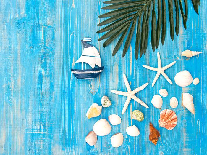 High angle view of seashell on table