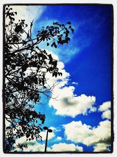Beautiful day...