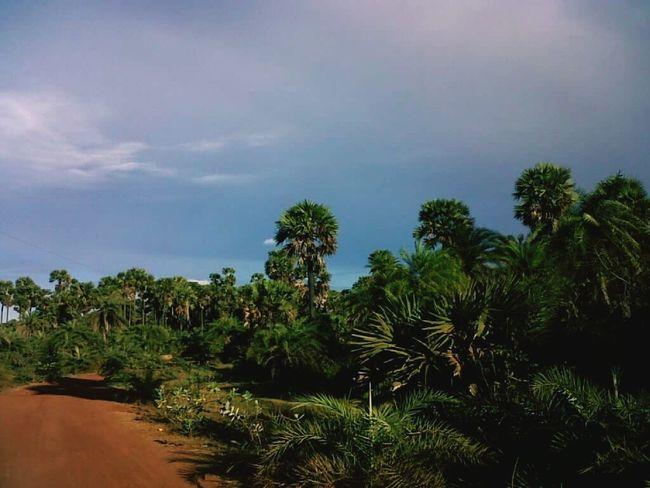 Remote village eega Village Roads