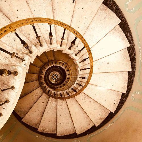 Steps-snail