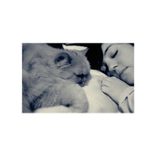 ... Good night