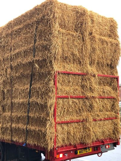 Low angle view of hay bales on roof
