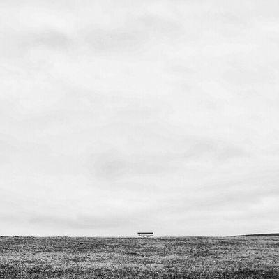 Sony Nex Nex5n Skopar 21mm bw blackandwhite monochrome bnw bnw_society landscape seat sky minnamurra australia