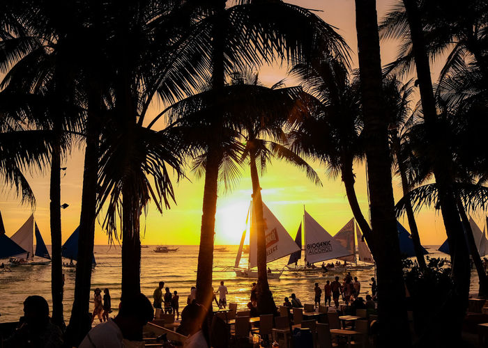 Architecture Beach Beauty In Nature Group Of People Horizon Over Water Nature Nautical Vessel Outdoors Palm Tree Plant Real People Sailboat Scenics - Nature Sea Silhouette Sky Sunlight Sunset Transportation Tree Tropical Climate Water