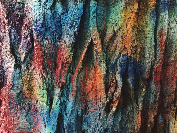 Prague Johnlenon Wall Textured  Rough Backgrounds Tree Trunk Multi Colored Tree