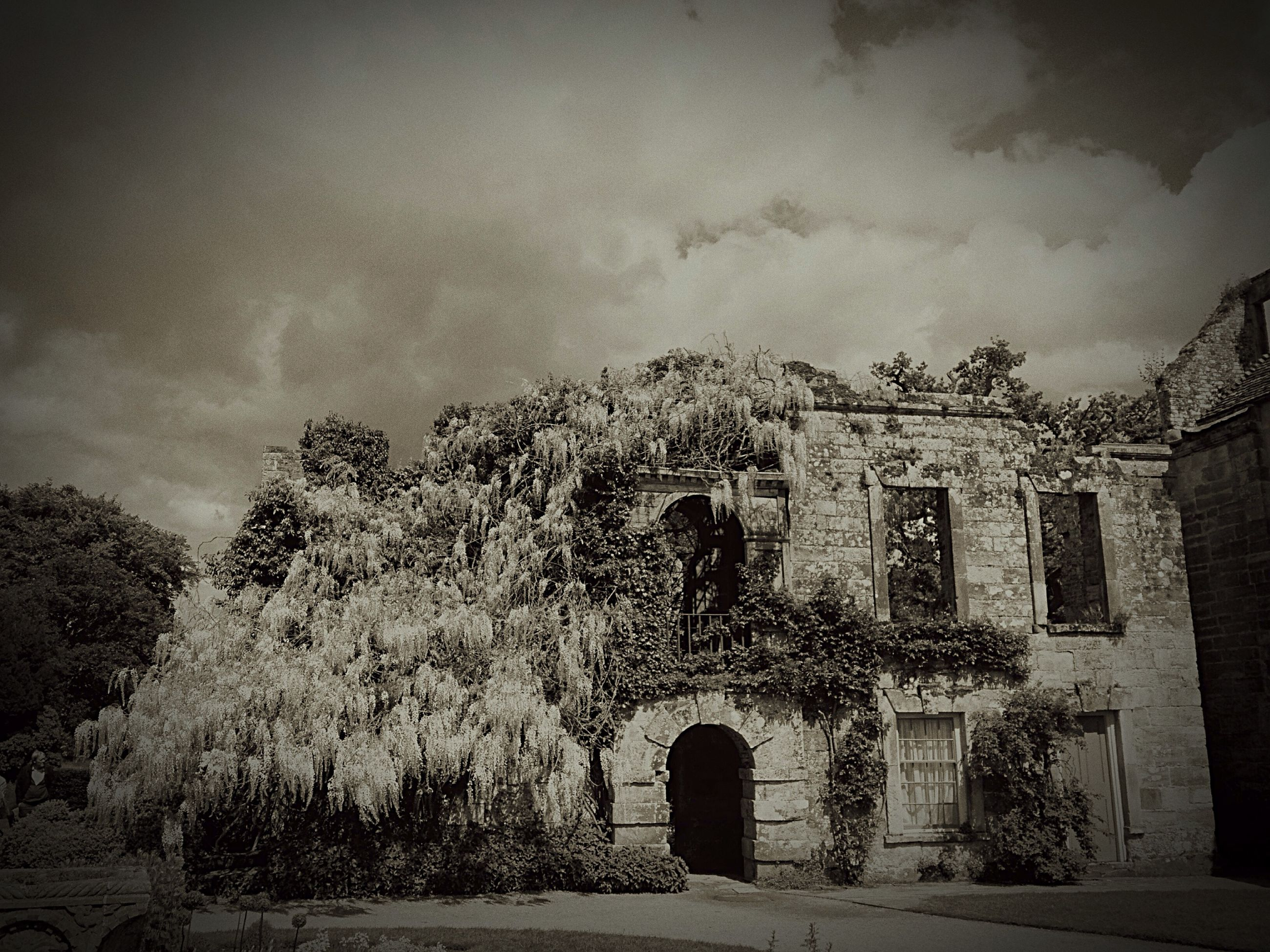 architecture, built structure, building exterior, arch, tree, old, sky, history, abandoned, stone wall, old ruin, house, the past, outdoors, wall - building feature, day, building, no people, run-down, obsolete