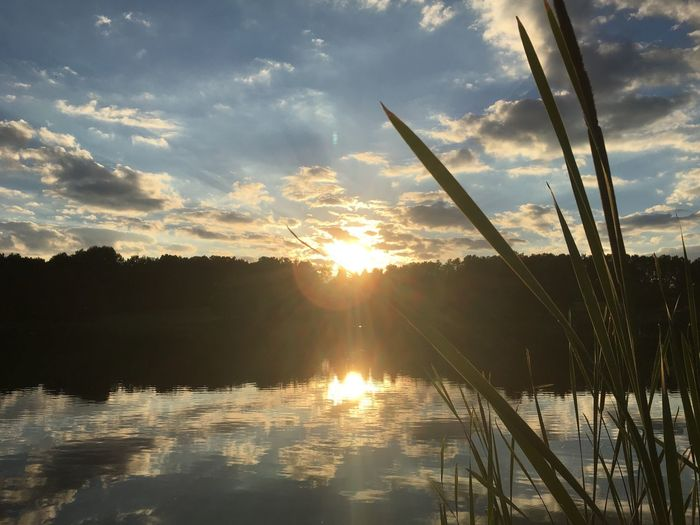 Sunset Tranquil Scene Scenics Nature Beauty In Nature Tranquility Cloud - Sky Sky Lake Reflection Water Sun Silhouette No People Sunbeam Sunlight Outdoors Growth Landscape Grass EyeEmNewHere EyeEmNewHere Sommergefühle