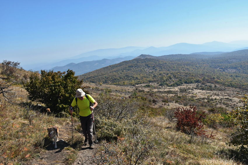 Rtanj mountain, Serbia Man Adventure Beauty In Nature Canine Dog Domestic Hike Hiker Leisure Activity Lifestyles Mountain Mountain Range Nature Non-urban Scene One Animal Outdoors People Pet Owner Plant Real People Scenics - Nature Senior Adult