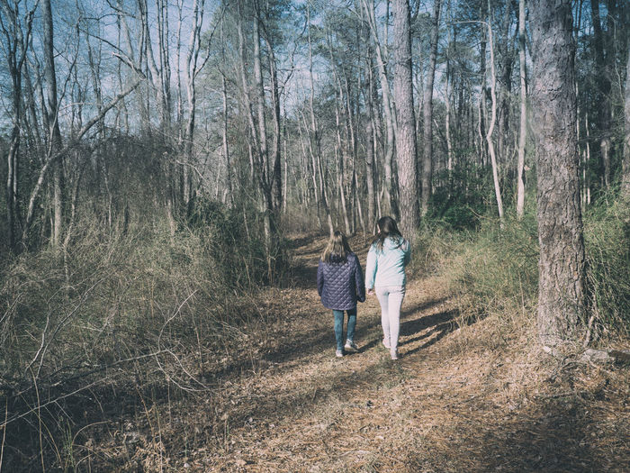 Rear view of friends walking on footpath amidst trees at forest