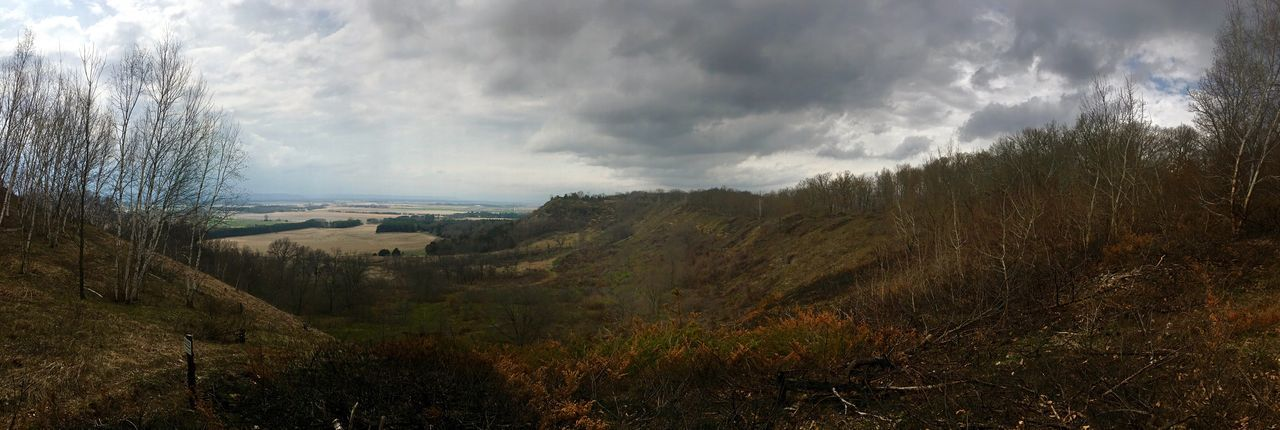 Hiked to the top of the bluff. Tree Nature Sky Tranquility Scenics Landscape Beauty In Nature Tranquil Scene Cloud - Sky Bluff Bluffs Panorama Pamoramic Panoramic