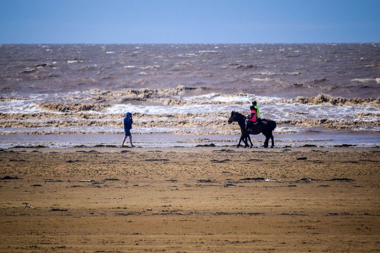 Sea Beach Land Water Sky Sand Nature Day Outdoors Beach Photography Horizon Over Water Leading Lines Space For Text Space For Copy Motion Horizon Wave Real People Men Leisure Activity Lifestyles People Horse On Beach Horse And Rider