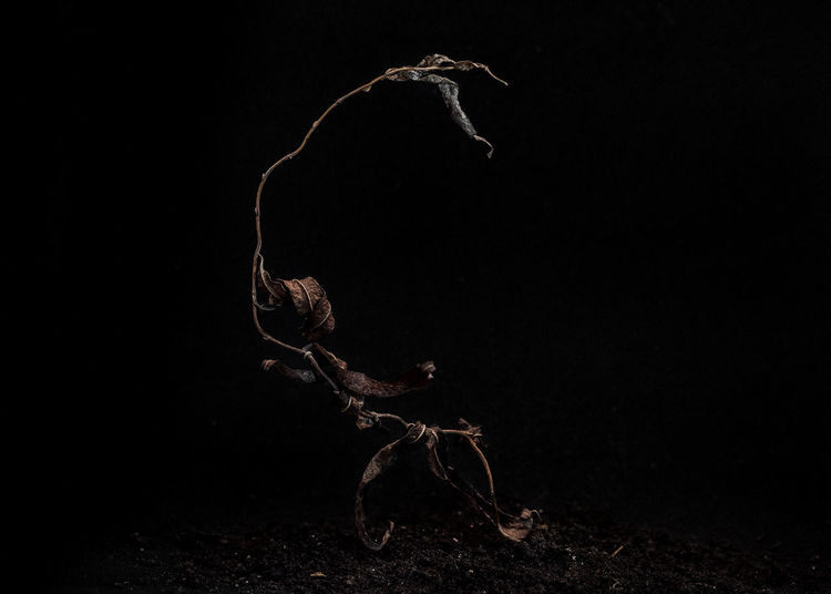 Light painting of a black background