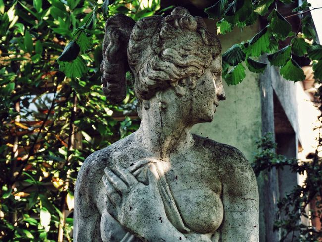Aphrona Statue Sculpture Art And Craft No People Day Outdoors Close-up Nature Adult Topfrancephoto Normandie France