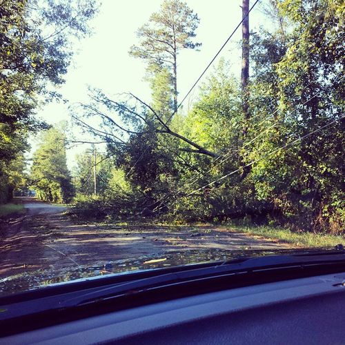 Tree on the power line and blocking the road out of the neighborhood. This is pretty consistent through the rest of the neighborhood too. SheridanAR Stormdamage