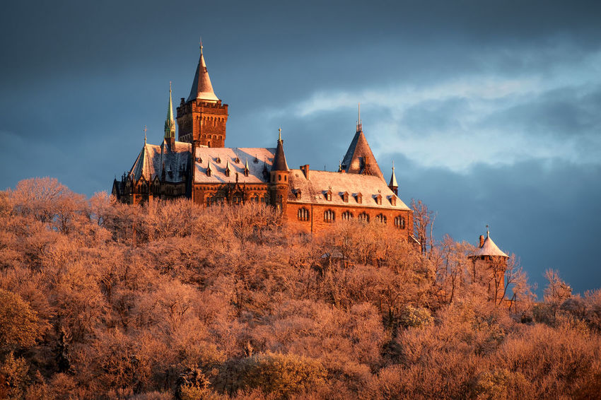 Das Schloss Wernigerode Castle Wernigerode Winter Architecture Belief Building Building Exterior Built Structure Cloud - Sky Germany Gothic Style Harz History Nature No People Place Of Worship Plant Religion Sky Spire  The Past Tower Travel Travel Destinations Tree