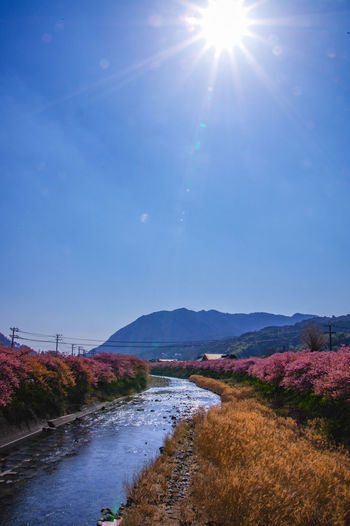 Scenic view of landscape against blue sky on sunny day