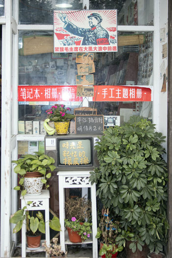 Arrangement Canon EOS 5DS China China Beauty Chinese Shop Choice Flower For Sale Information Information Sign Large Group Of Objects Mao Market Stall Pingjiang PIngjiang Road Price Tag Shop Suzhou Suzhou China SUZHOU PINGJIANG ST Suzhou, China Text Venice Of The East Western Script
