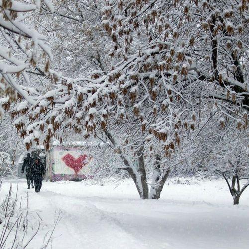 Snow ❄ Streetphotography Novosibirsk Autumn