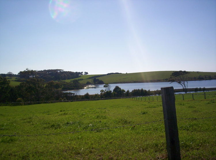 Farm near Tilba on NSW South Coast, Australia Countryside Farm Farmland Grass Green Rolling Hills Hillside Inlet Lake Paddocks Pasture Rural Trees