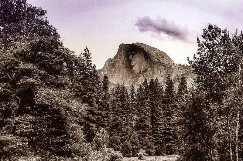 Half Dome.